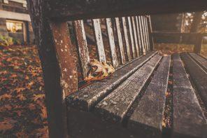 Autumn Wellness Podcast